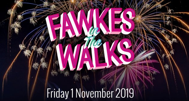 Fawkes 2019