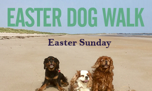 An image of three dogs on the beach to advertise the Easter dog walk event on at Hunstanton