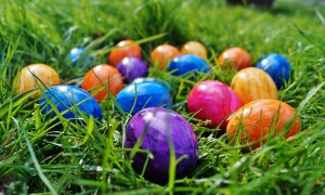 An image of several coloured Easter eggs in the grass