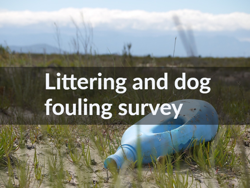 Littering and dog fouling survey