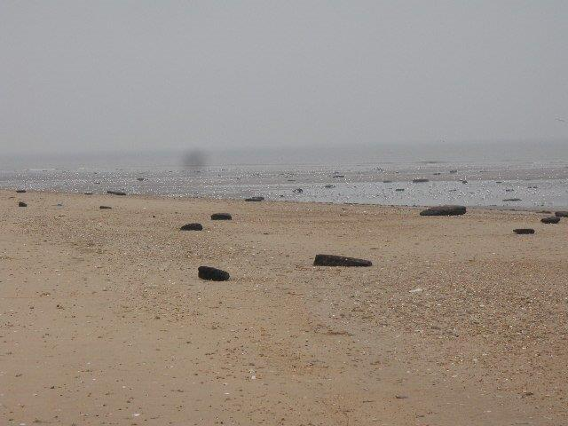 Objects washed up on Hunstanton beach, now confirmed as peat
