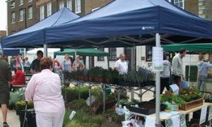 Shoppers browse the stalls at the plant fair