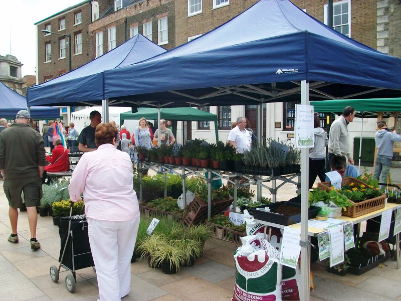 A woman browses a stall at a plant fair on the Tuesday Market Place in King's Lynn